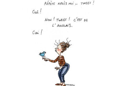Article : Tweet tweet
