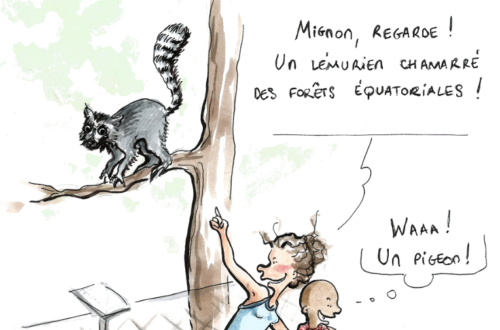Article : Mignon au zoo