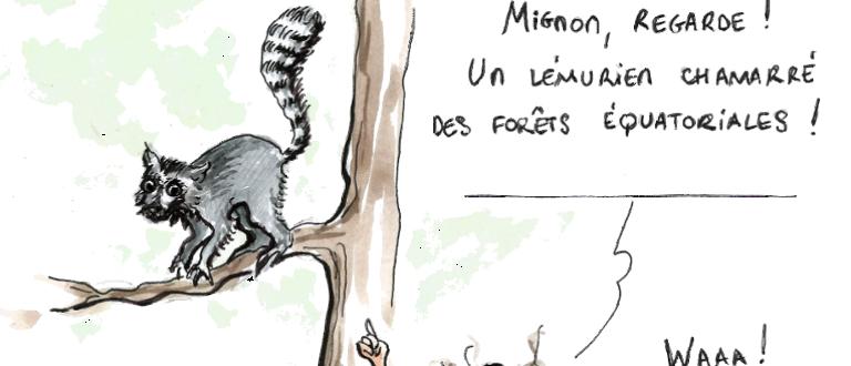 Article : Mignon au zoo